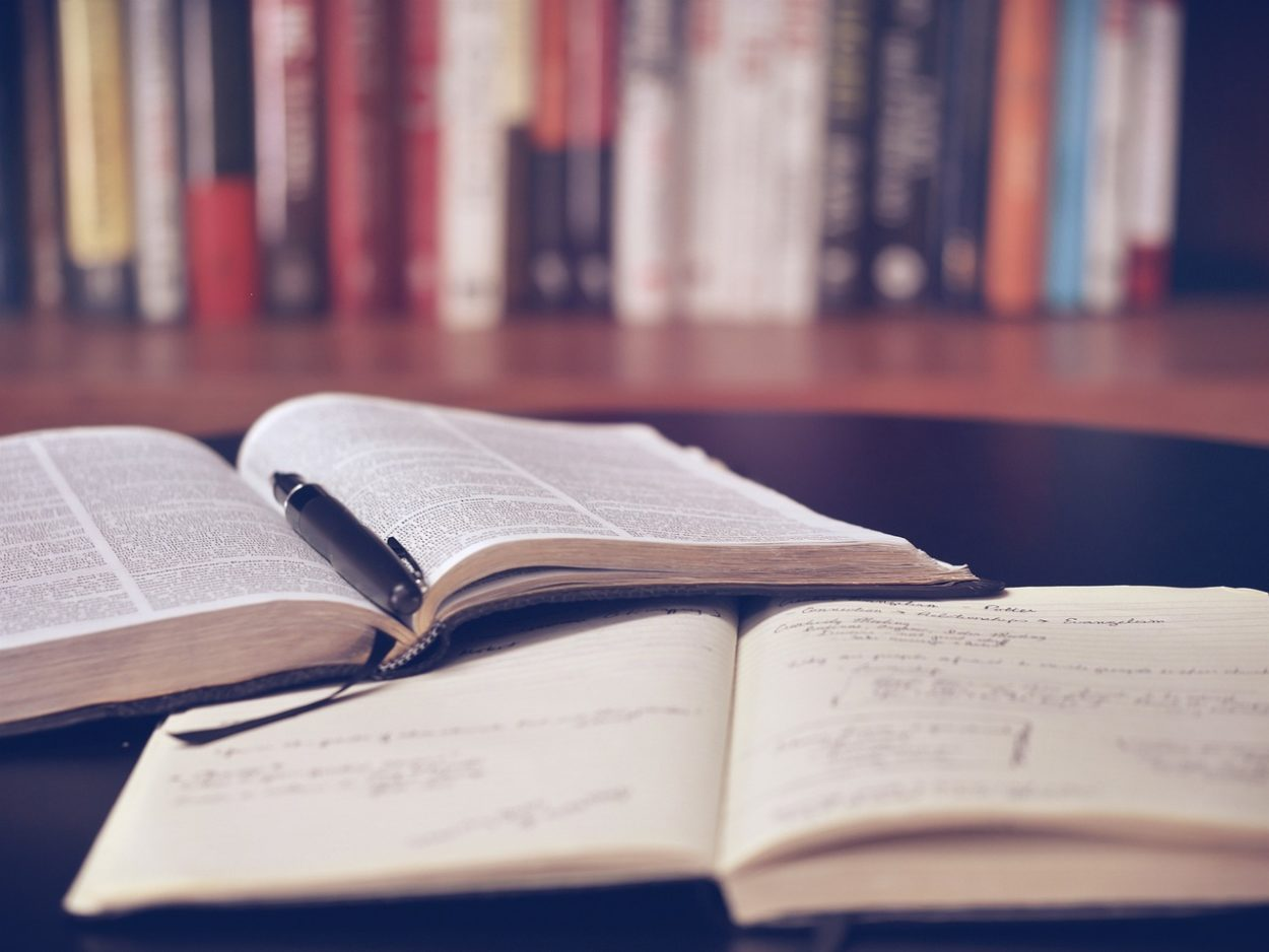 Read books and guides effectively and correctly - learn to read